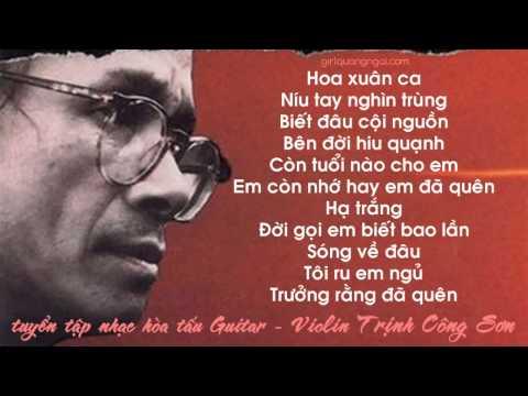 Nhạc Trịnh Không lời hay nhất