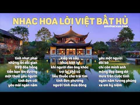 Tuyển Tập Nhạc Hoa Lời Việt Bất Hủ - Những bài hát quen thuộc thập niên 90
