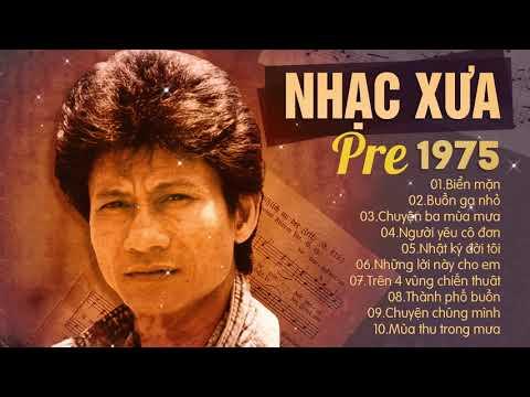 Nhạc Vàng Chế Linh Trước 1975 - Nhạc Vàng Xưa Hay Nhất Mọi Thời Đại